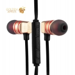 Вакуумные наушники вкладыши с микрофоном Hoco EPV02 Wire Headphone Golden, цвет золотистый
