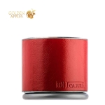 Портативная Bluetooth колонка ICarer Mini Portable Speaker BF-120 Bass-Enhance 65db (IYX0002), цвет красный